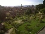 Firenze dalla collina